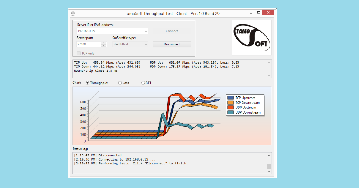 TamoSoft Throughput Test