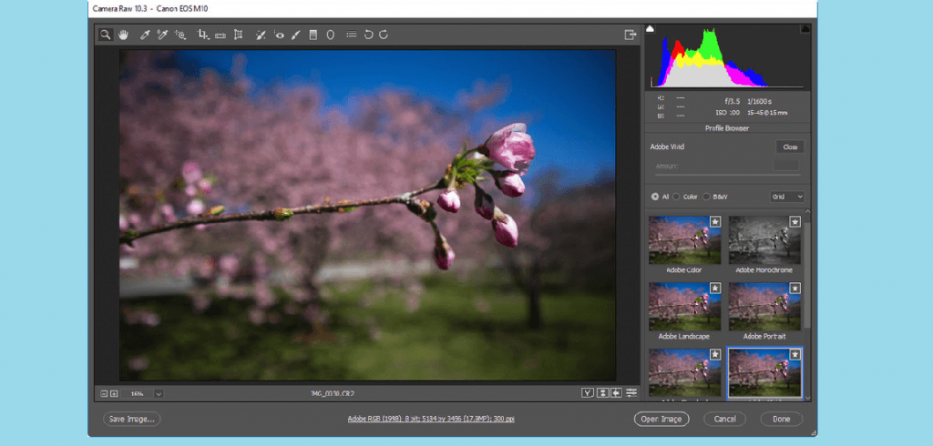 Adobe Photoshop Best Photo Editing Software For PC
