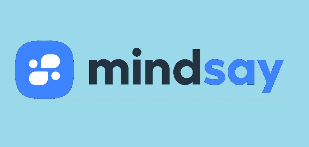 Mindsay A Conversational AI Platform for Enterprises