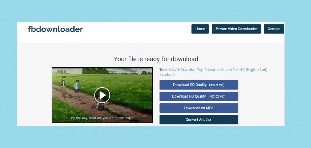 How to download a video from Facebook on computer