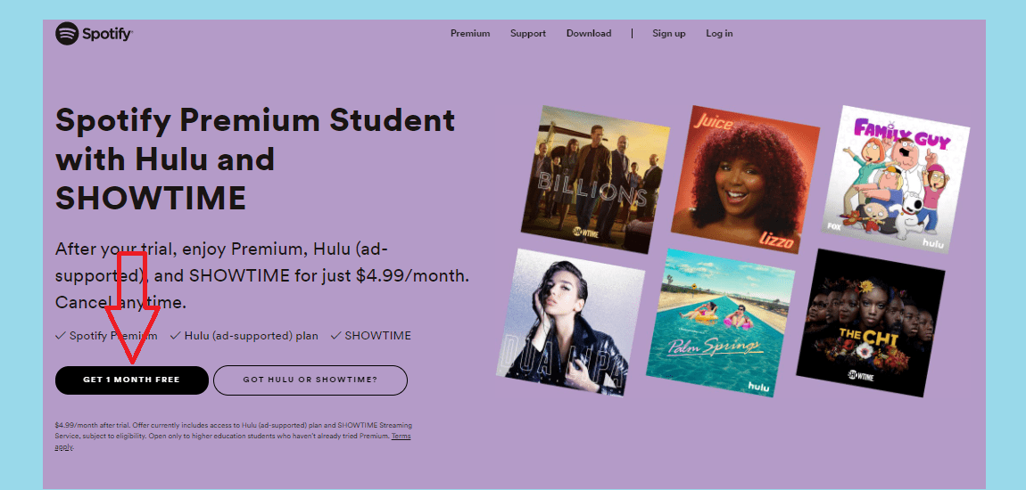 How to get a Hulu student discount
