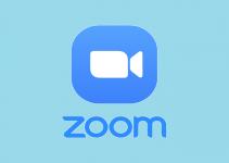 Fix Zoom Camera Not Working