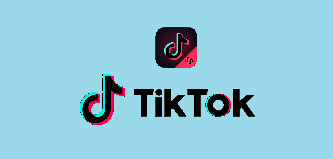 Making Use of TikTok Algorithm