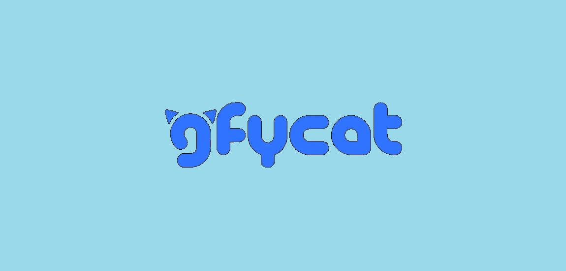 Gfycat memes